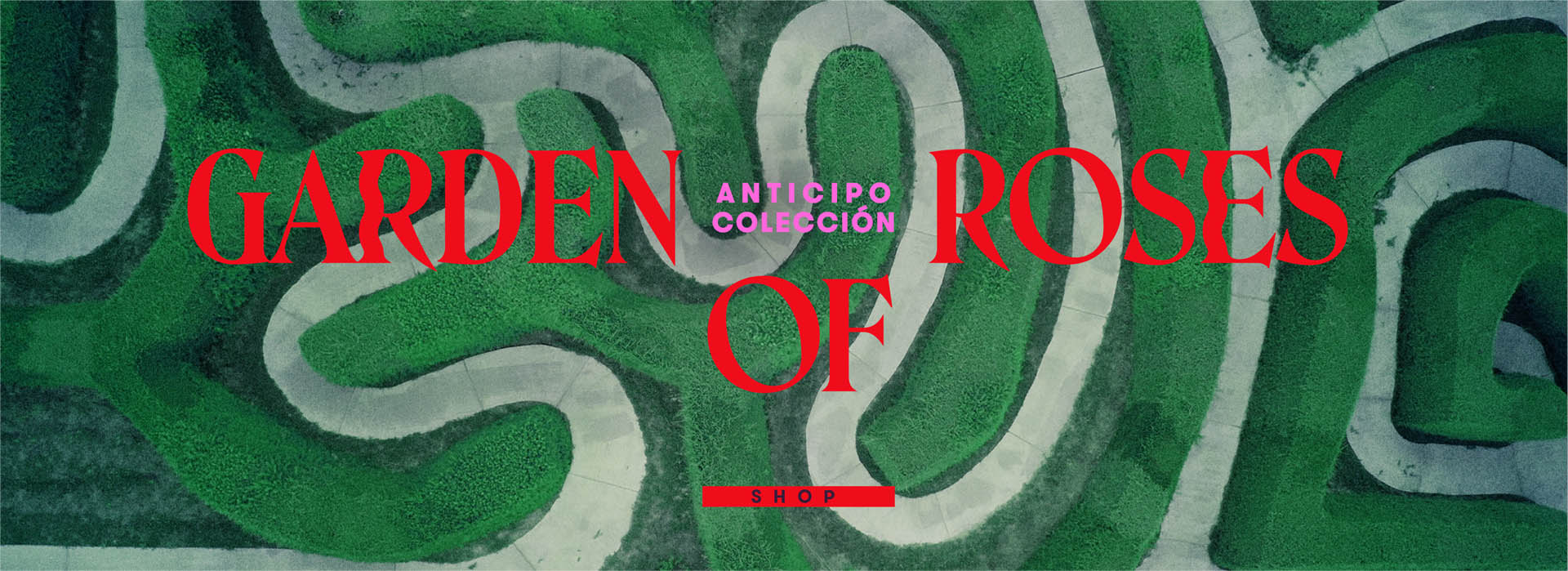 ANTICIPO1
